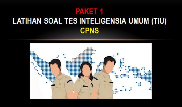 Paket 1 Kumpulan Contoh Latihan Soal Tes Inteligensia Umum (TIU) CPNS