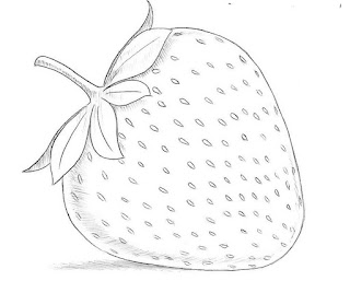 Sketsa Buah Strawberry