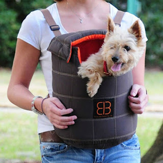 LENIS PACK PET CARRIER
