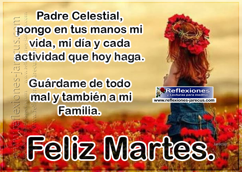 Feliz martes, padre celestial pongo en tus manos mi vida, mi día y cada actividad que hoy haga, guárdame de todo mal y también a mi familia