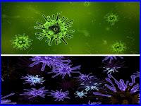 Sejarah Penemuan Virus Lengkap, Biologi SMA Kelas X