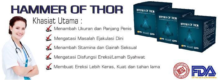 kedai suami kuat supplier dan pemborong hammer of thor malaysia