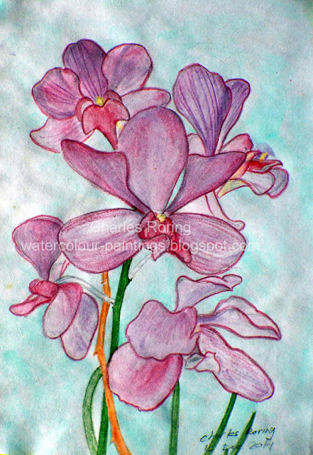 Red and purple orchid flower