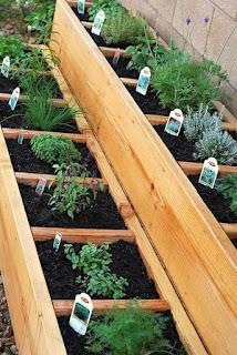 http://www.artandappetite.com/2011/04/desert-gardening/