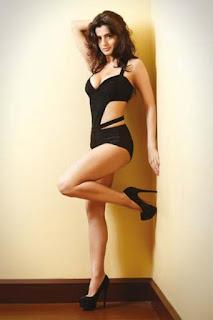 Amisha Patel Sexy Legs 1