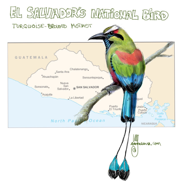 El Salvador's national bird Painting by Ulf Artmagenta