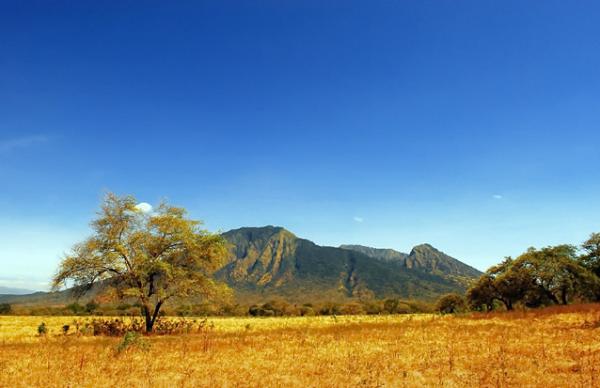 Taman Nasional Baluran, Jawa Timur
