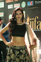 Shu Aiyappa Spicy Black CHoli Low Rise Ghagra ~  Exclusive 48.JPG