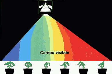 Coltivazione artificiale. un blog per neo growers!: lampade efficaci