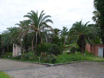 花博記念公園鶴見緑地 モロッコの庭園