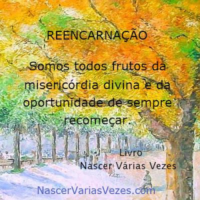 Reencarnação, somos todos frutos da oportunidade de sempre recomeçar