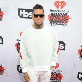 Chris Brown could face jail for keeping pet monkey