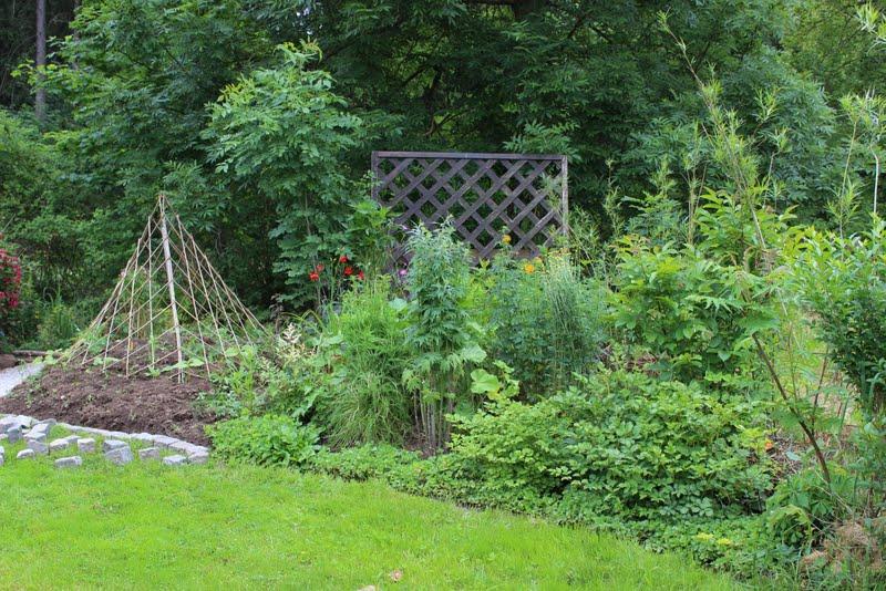 wildes gartengl ck kompostplatz neu gestaltet. Black Bedroom Furniture Sets. Home Design Ideas