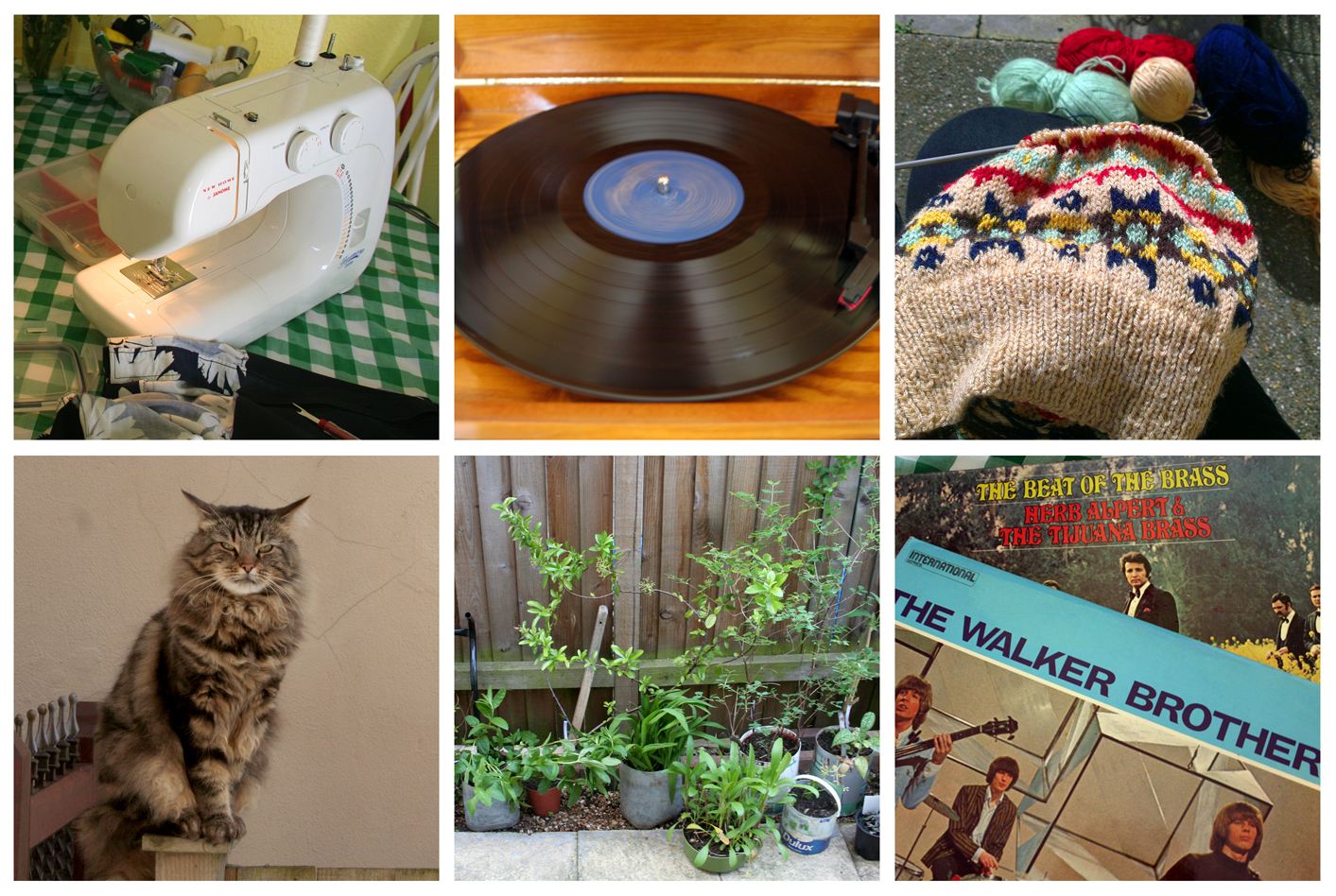 Collage of Images Sewing listening to the walker brothers record knitting and gardening