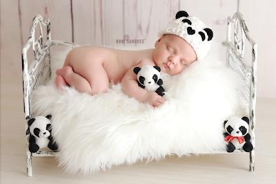 bebê newborn vestido de urso panda