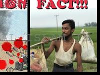 Media Sosial Geger, Aktivis HAM Unggah Sosok Pahlawan Untuk Rohingya yang Sesungguhnya