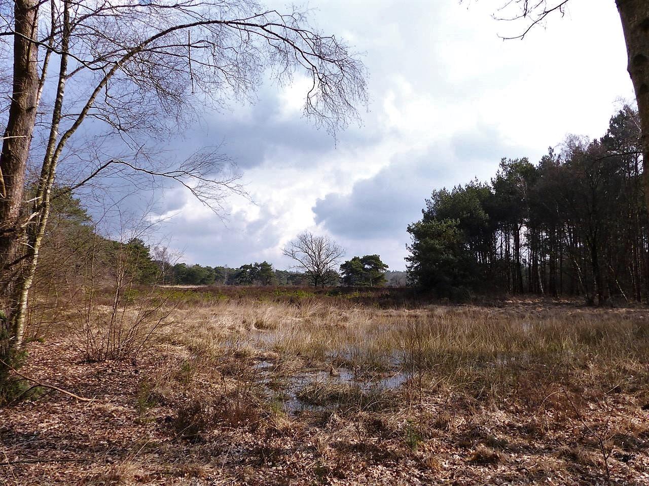 Mooiste Routes Wandelen Bij Achtmaal Noord Brabant