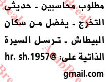 وظائف وسيط الاسكندرية-محاسب