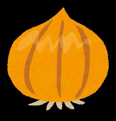 玉ねぎのイラスト(野菜)