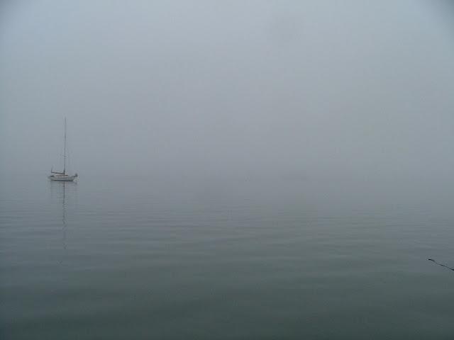 San Juan Islands fog