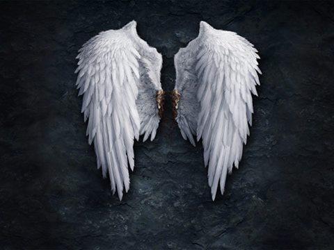 Курсы повышения квалификации для Ангелов.