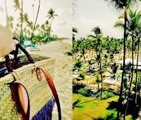 744-capazos-beach-bag-summer-sietecuatrocuatro-basket-cestos-mimbre-republica-dominicana