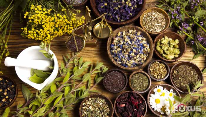 Manfaat keanekaragaman hayati sebagai sumber obat-obatan