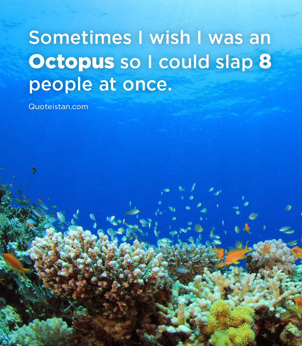 Sometimes I wish I was an Octopus so I could slap 8 people at once.
