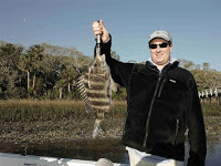 Biggest Sheepshead 2017