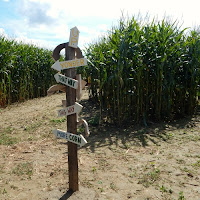 Alice in Wonderland Corn Maze at Chilifest at Mike's Maze New England Fall Events