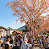 Com dia mais movimentado da história de Pomerode (SC), 11ª Osterfest ultrapassa a marca de 107 mil visitantes