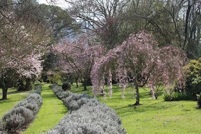 giardino di ninfa a primavera