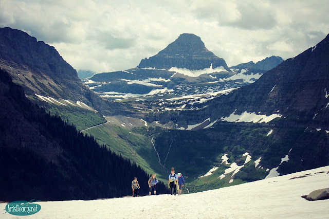 the saddle highline trail glacier national park family hiking trip outdoors mountains beauty nature