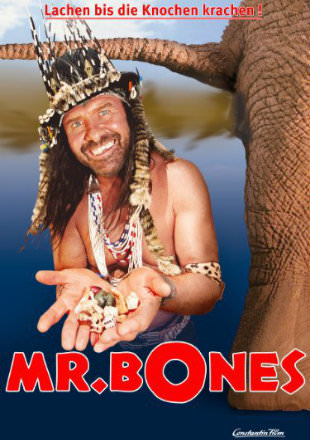 poster of Mr Bones 2001 DVDRip 720p Dual Audio Hindi English