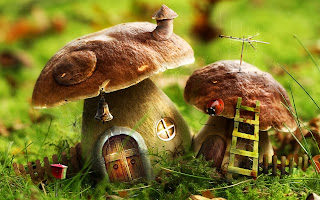 little-mushroom-home-image-fantasy-dream-pictures.jpg