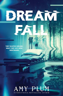 Dreamfall by Amy Plum book cover