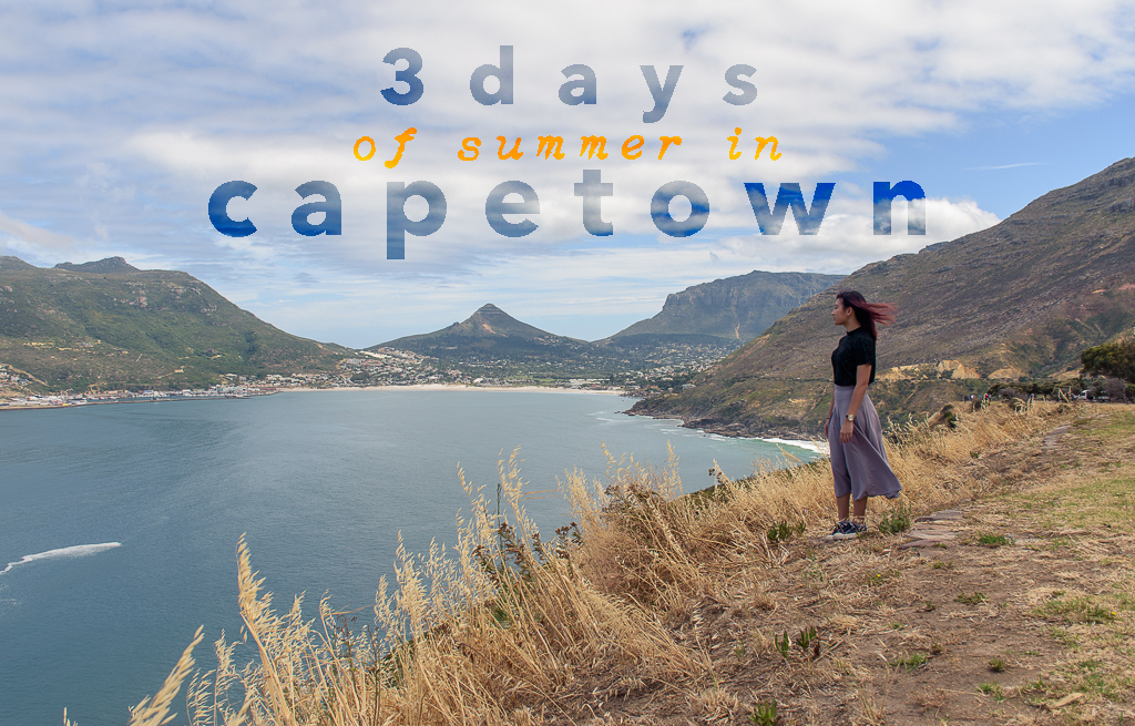 3 days in cape town south africa