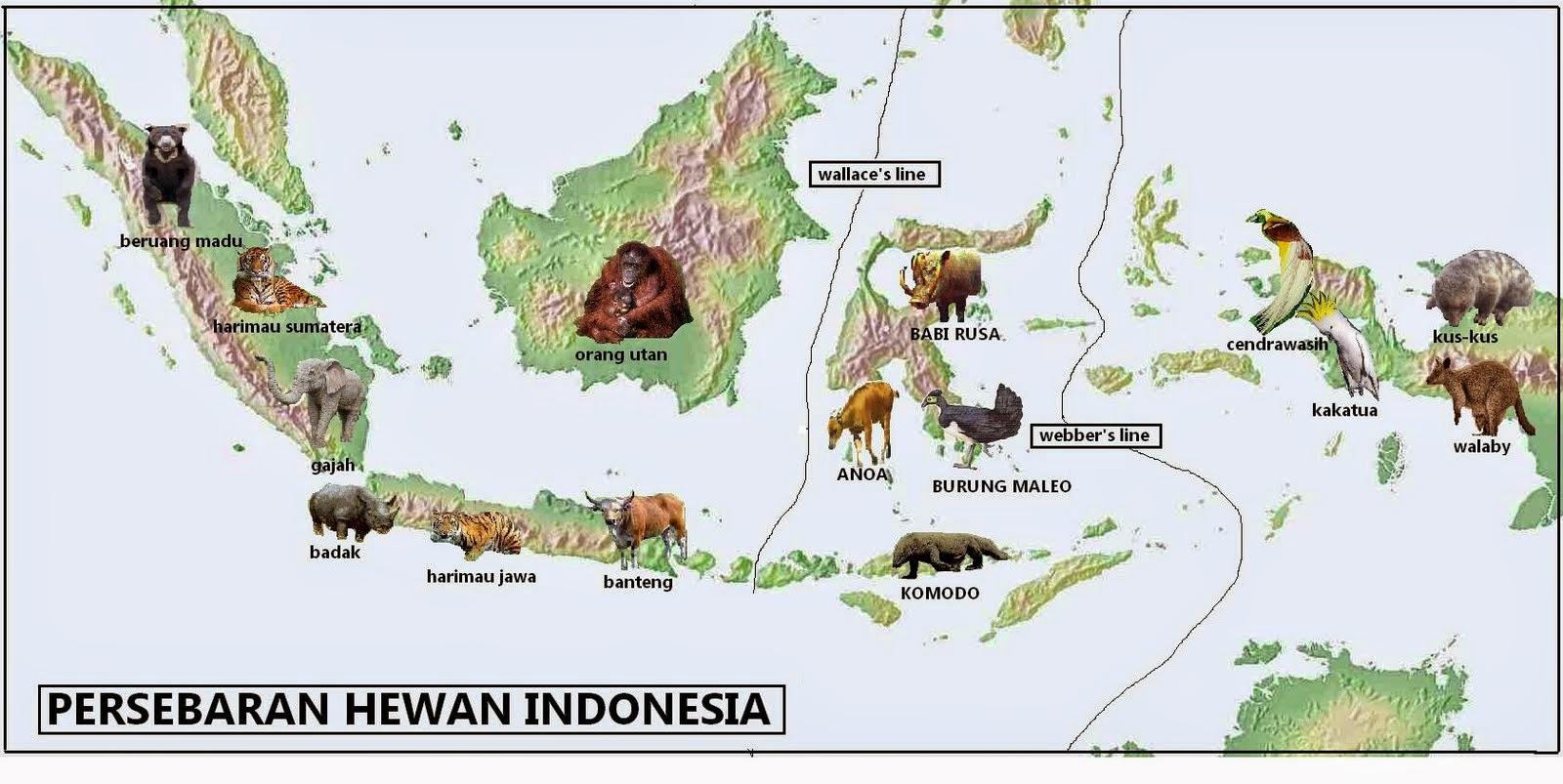 Peta Persebaran Flora dan Fauna di Indonesia