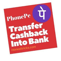 how to transfer phonepe cashback to bank account