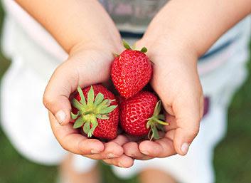 فوائد الفراولة أو التوت أو الفريز الصحية و الغذائية