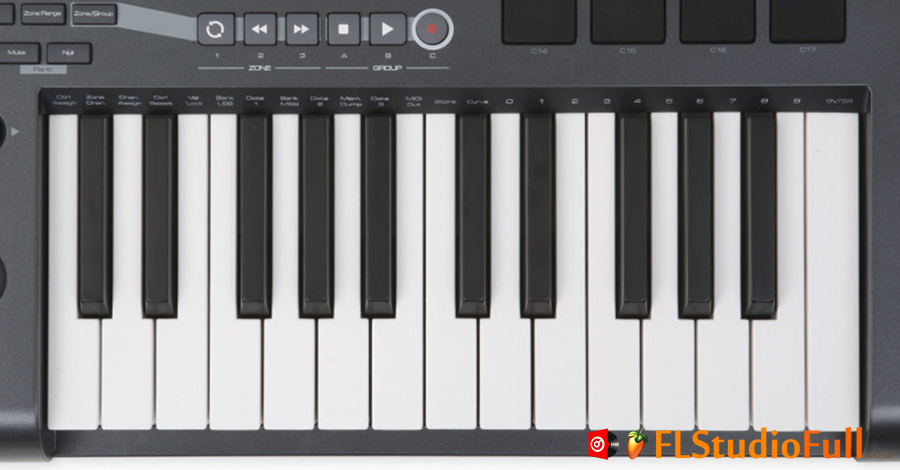 Teclado MIDI M-Audio Axiom 25 [Teclas]
