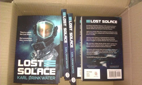 Lost Solace - The Book And The Idea For It