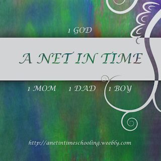 A Net in Time