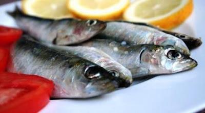 makanan sehat untuk jantung yang pas dikonsumsi sehari-hari, Ikan Sarden