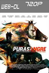 Purasangre (2016) WEB-DL m720p
