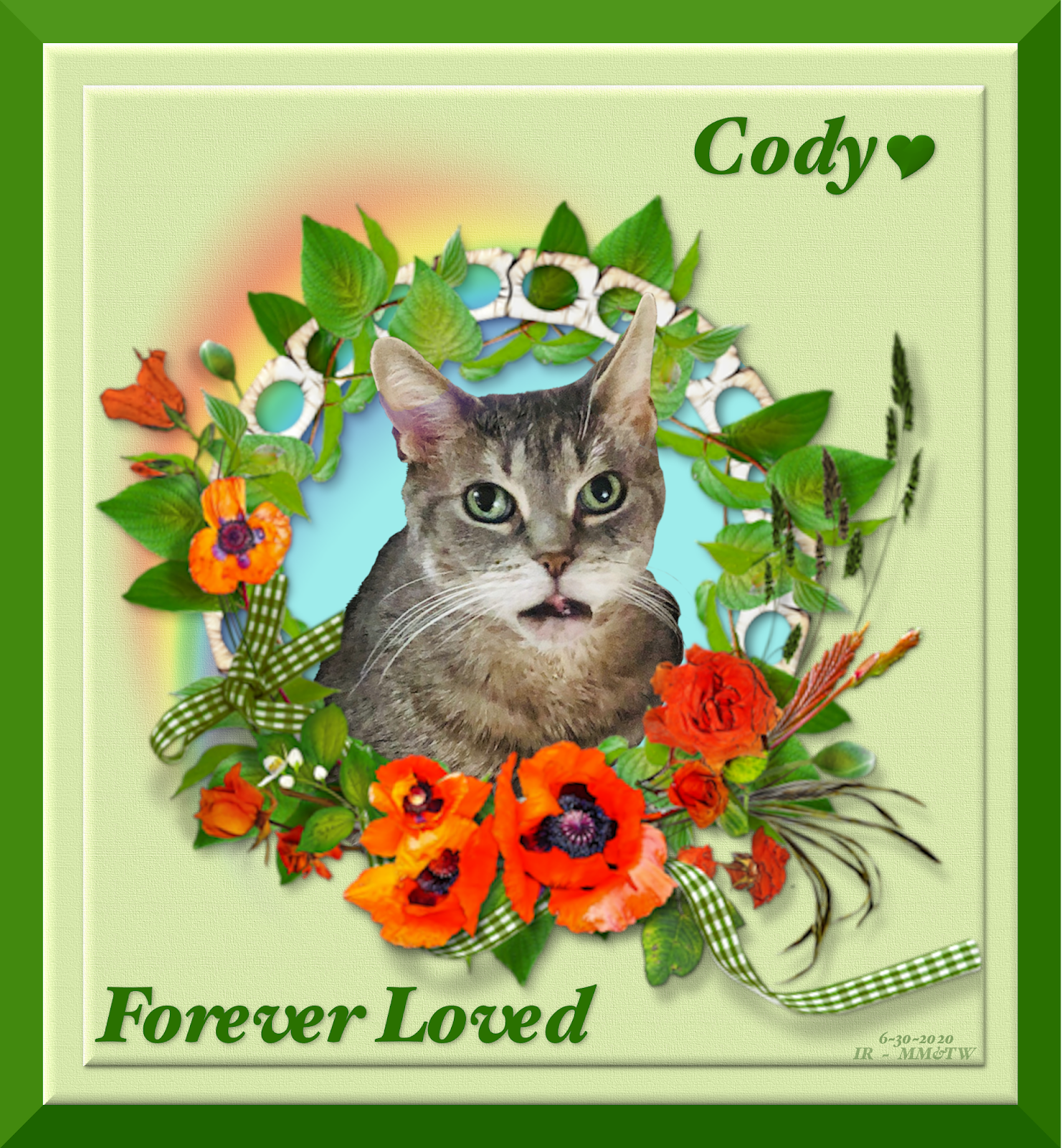 Cody Forever Loved