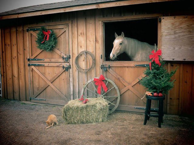 Christmas Horse HD Wallpapers Download Free