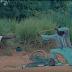Video :  Barnaba Ft Aslay – NGOMA   Download - JmmusicTZ.com