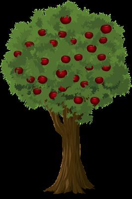 Konsep Energi Apa yang Ada di Saat Buah Jatuh dari Pohonnya? Yeni Arifah Khofshoh