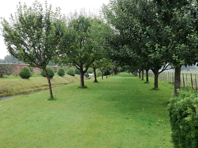 The Apple Tree Walk, aleja z jabłoni